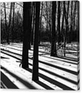 Shadows And Tracks Canvas Print