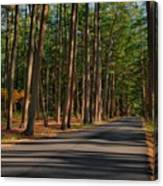 Shadows Road - Ocean County Park Canvas Print