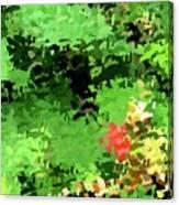 Shady Composition Canvas Print