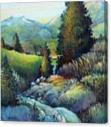 Shady Creek Canvas Print