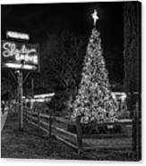 Shady Grove Austin Bw Canvas Print