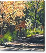 Shady Lane Canvas Print