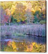 Shady Pond Canvas Print