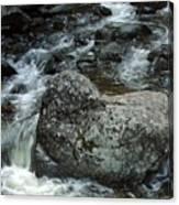 Shady Stream Boulder Canvas Print