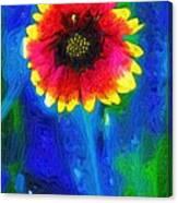 Shaggy Moon For A Shaggy Flower Canvas Print