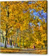 Shaker Fall Walk Canvas Print
