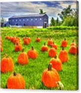 Shaker Pumpkin Harvest Canvas Print