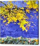Shaker Stone Fence 2 Canvas Print