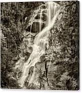 Shannon Falls - Bw Canvas Print
