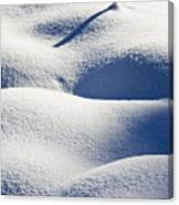 Shapes Of Winter Canvas Print