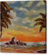 Sharks Cove North Shore Oahu #394 Canvas Print
