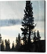 Shasta Trinity National Forest Sunrise Portrait Canvas Print