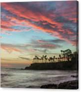 Shaws Cove Laguna Beach Canvas Print