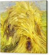 Sheaf Of Grain 1907 Canvas Print