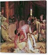Shearing The Rams Canvas Print
