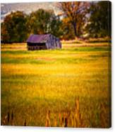 Shed In Sunlight Canvas Print