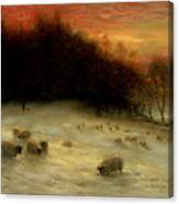 Sheep In A Winter Landscape Evening Canvas Print