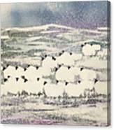 Sheep In Winter Canvas Print