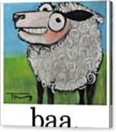 Sheep Poster Canvas Print