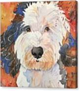 Sheepadoodle Canvas Print