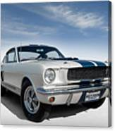 Shelby Mustang Gt350 Canvas Print