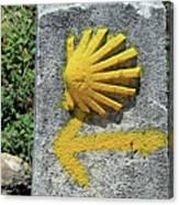 Shell And Arrow Marker, El Camino, Spain Canvas Print