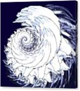 Shell No. 2 Canvas Print