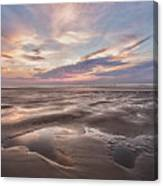 Shell Seeker Canvas Print