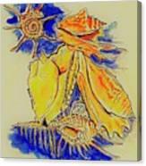 Shell Treasures Canvas Print