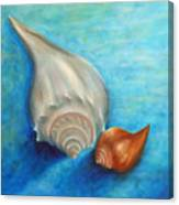 Shells In Blue Canvas Print