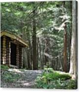 Shelter On Hemlock Trail Canvas Print