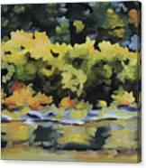 Shenandoah River Bank Canvas Print