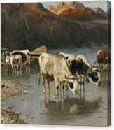 Shepherd With Cows On The Lake Shore Canvas Print