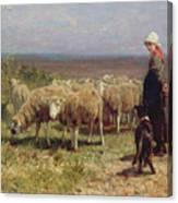Shepherdess Canvas Print