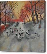 Shepherd's Delight Canvas Print