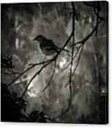 Shhhh A Bird Canvas Print