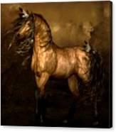 Shikoba Choctaw Horse Canvas Print