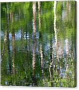 Shimmering Reflection Canvas Print