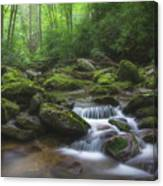 Shining Creek Canvas Print