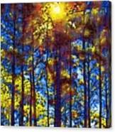 Shining Through Canvas Print