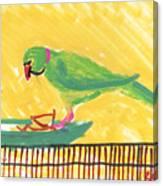 Shirley's Bird Canvas Print