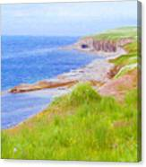 Shores Of Newfoundland Canvas Print