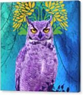 Owl At Night Canvas Print