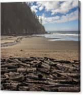 Short Sands Logs Canvas Print