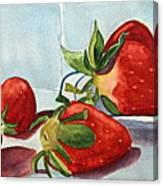Shortcake Canvas Print