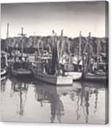 Shrimp Boats Mosquito Fleet Canvas Print