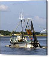 Shrimper With Birds On Wire Canvas Print