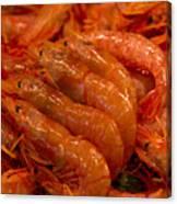 Shrimps Canvas Print