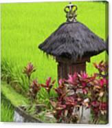 Shrine In Rice Field Canvas Print