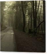 Shrouded Path Canvas Print